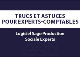 Article-blog-sage-generation-experts-sage-production-sociale-experts
