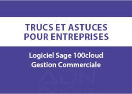 Article-blog-sage100c-gestion-commerciale