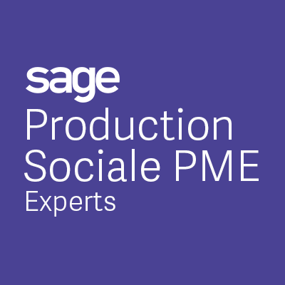 sadn-software-sage-production-sociale-pme-experts