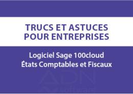 Article-blog-sage100c-ECF